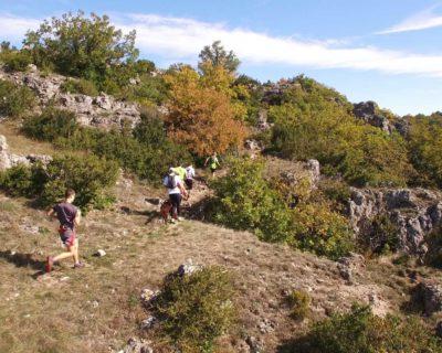 Trail les terrasses du lodévois